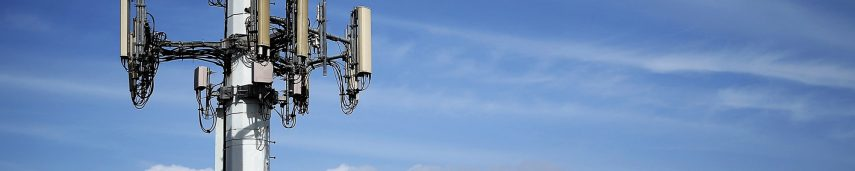 What are different types of small cells used for?