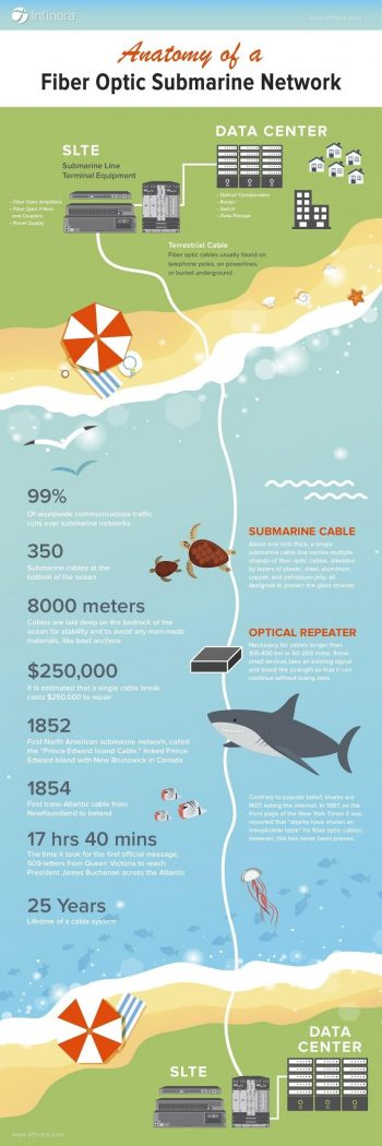 Infographic outlining fiber optic submarine networks